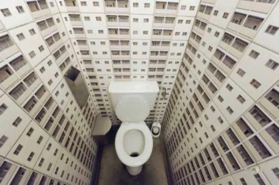 Всемирный день туалета